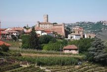 Castiglione Falletto / Castiglione Falletto, landscape by Ceretto's winery