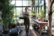 Gardening | greenhouses