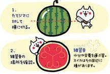 Recipe (Japanese)