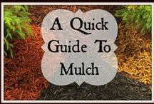 Mulching Tips and Ideas