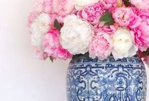 Pink and Navy Cottage
