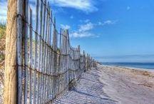 LifeS a beachy Sea / I SEA OCEAN! / by CheRiBa::WilliAmS ::::::::::::
