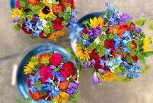 Bouquets for Weddings by Peamore Flora / Wedding flowers, bouquets by Grace from Peamore Flora, Peamore Gardens, Alphington, Exeter, Devon. EX2 9SJ