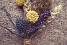 Buttonholes and corsage by Peamore Flora / By Grace Michaels, Peamore Flora
