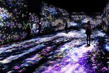 TeamLab / TeamLab, Flowers and People, Cannot be Controlled but Live Together – A Whole Year per Hour