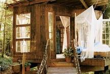 Backyards & Outdoor Space