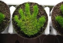 pouces verts