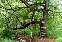 Outdoor Play / Encouraging outdoor, risky and nature play - love outdoor play!