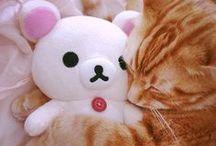 ♥ kawaii / super cute stuff