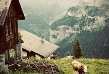 ♥ Switzerland / home sweet home