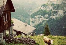 ♥ Switzerland / home sweet home