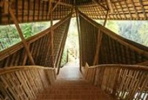 Eco-tecture / designed by nature, inspired by nature, or in support of nature / by CPALI Wild Silk Markets