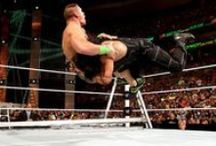 WWE / WWE wrestling all the best wrestlers wrestle each other in hope to be the new World Heavy Weight Champion !!!