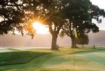 Golf Courses in Sussex / The best Golf sites in Sussex