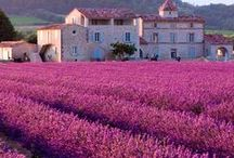 France Provence