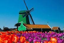 Viajar a Ámsterdam / ¿Tienes ganas de conocer esta ciudad? Hazlo con #Despegar y viaja a Ámsterdam.