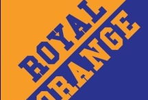 Royal & Orange / by IMC Sport Novelties