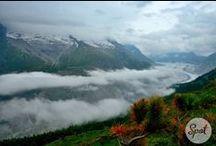 Swiss Spots