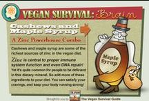 VSG Infographics / Vegan Nutritional Tips from the Vegan Survival Guide
