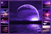 Midnight Purple / It's so PURPLE