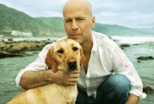 Bruce Willis / My Favorite