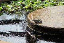 Water features / garden fountains