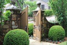 Gardening Ideas / by Janelle Chesnutt