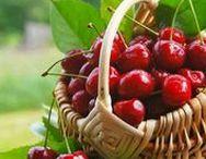 Bienestar, salud, alimentación y ejercicio / Todo lo que es bueno para la salud, incluido nutrición y deporte