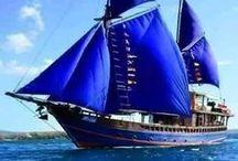Medios para viajar / cualquier vehículo para transportar personas - antiguos y modernos, por tierra, mar y aire