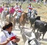 Soria - Fiestas de San Juan