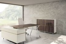 Executive furniture / Meble gabinetowe / # executive furniture # desk # meble gabinetowe # biurko
