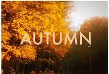 HML | Herfst