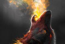 Wolves of Men / Wild at heart but true in feelings