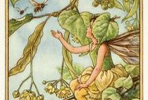 Flower Fairies / Our collection of Cicely Mary Barker's Flower Fairy prints
