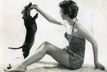 Doxie Lyfe / All things doxie (dachshund) (weenie dog) (etc)