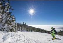 Skifahren & Snowboarden im Mühlviertel / Das Mühlviertel verfügt über viele Skigebiete, die bis zu 1.300 m Höhe aufragen. Genießen Sie Ihren Ski- & Snowboard-Urlaub im Granithochland mit Freunden & Familie.