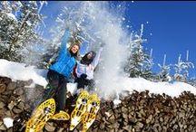 Winteraktivitäten im Mühlviertel / Im Mühlviertel können Sie den Winter auf abwechslungsreiche Art beim Schneeschuhwandern, Eislaufen, Rodeln, Winterwandern & Eisstockschießen erleben.