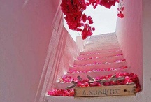 Stairs to where ever / by Kelly Ann