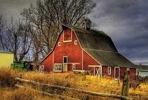 Barns  / by Sheela Krout