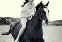 Equestrian <3 / by Abbey Shoun