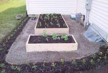 Gardening//Outdoor Spaces / by Jordana M. R.