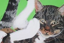 Cats / Artworks and photos celebrating the beauty of cats