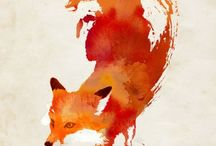 Foxy things / Fox is my favorite animal, and here re all stuff and photos about foxes u know