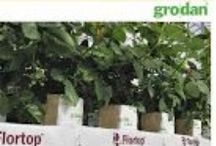 Brochures - Hydroponic Floriculture Products
