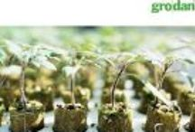 Brochures - Hydroponic Propagation Products