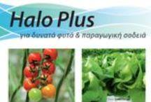 IQ Crops' Fertilizers