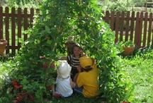 Terrasse et jardinage