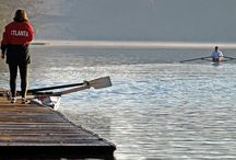 Rowing / by Miguel XdE