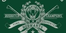 I'm Slytherin and I know it / It talk about my very burning Slytherin Pride B)