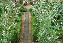 Huerto y jardin